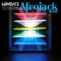 Techno Fan (Afrojack Remix)