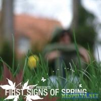 First Sings Of Spring