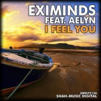 I Feel You (Mobil Remix)