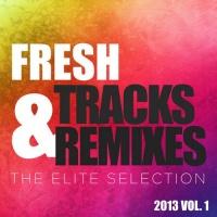 Fresh Tracks & Remixes: The Elite Selection 2013 vol. 1
