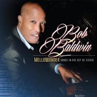 Mellowonder/Songs In The Key Of Stevie