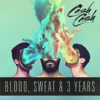 Blood, Sweat & 3 Years