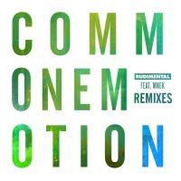 Common Emotion (The Golden Pony Remix)
