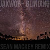 Blinding (Sean Mackey Remix)