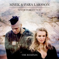 Never Forget You - Remixes