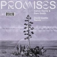 Promises (David Guetta Remix)