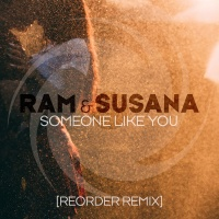 Someone Like You (ReOrder Remix)