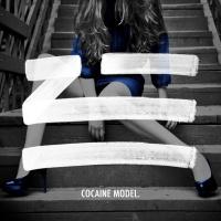 Cocaine Model
