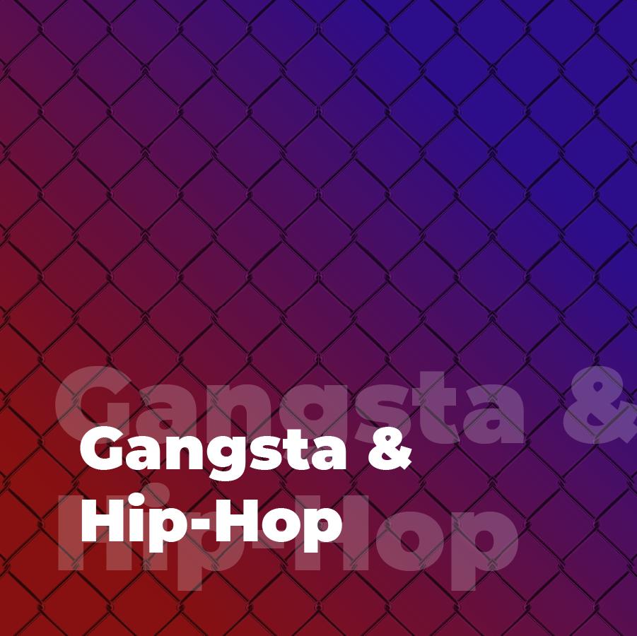 Gangsta & Hip-Hop.101