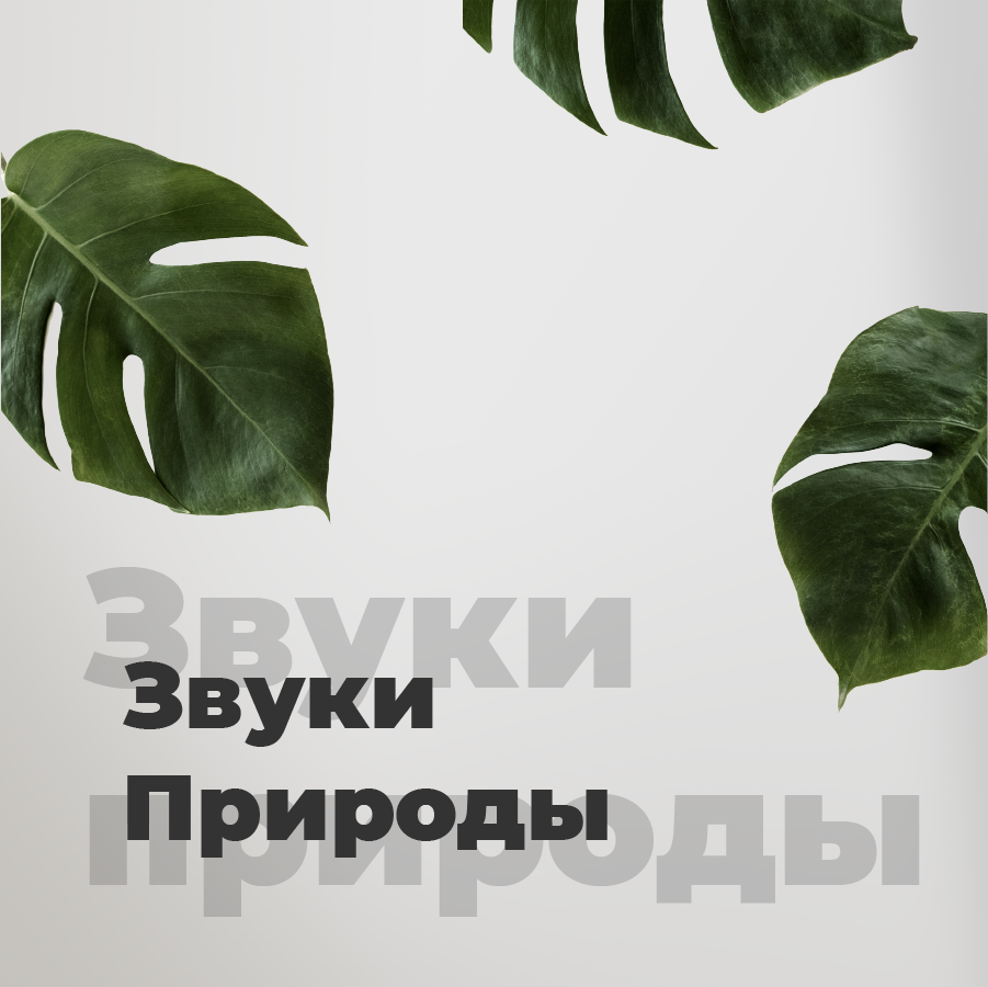 Станция Звуки Природы на 101.ru